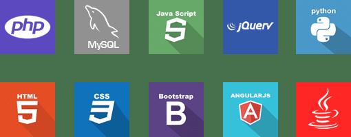 Desarrollo de Software en diferentes lenguajes